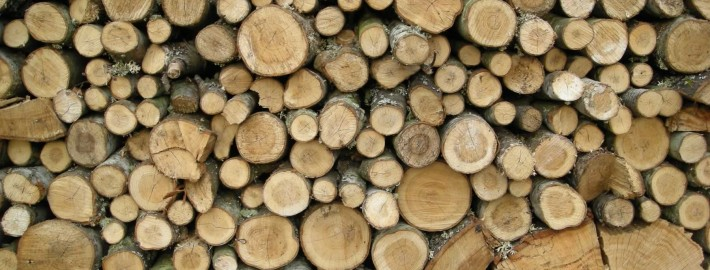 Kiln Dried Wood Logs and Firewood - BestLogs Dublin