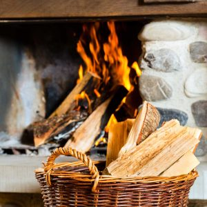 Quality Firewood and Stove Wood from Best Logs