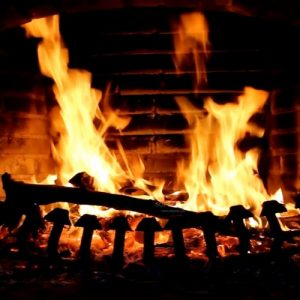 Bestlogs.ie Kiln Dried Firewood Ireland