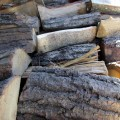 Logs close up