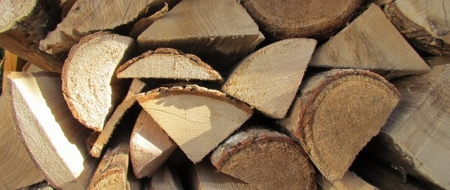 Ash Best logs for your Stove