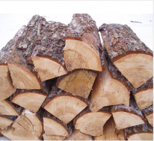 Kiln-Dried Wood Logs