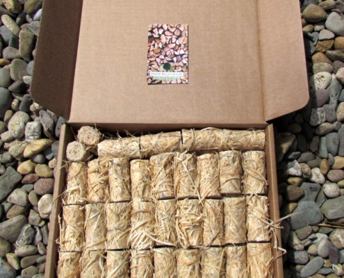 Eco Firelighters Wood Wool